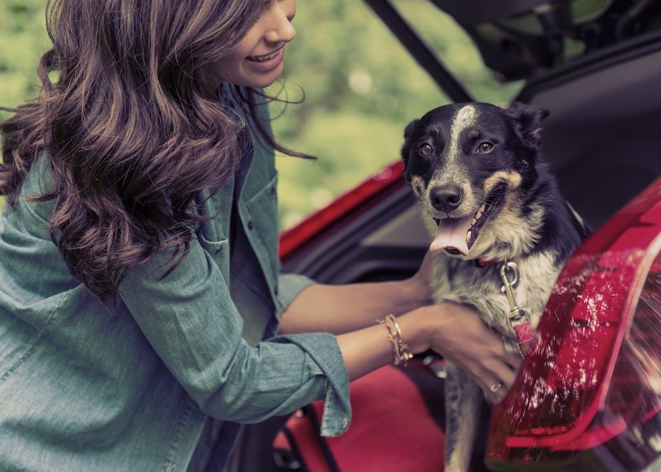 Cadillac GM Family First Discount Program: woman with dog in hatch back