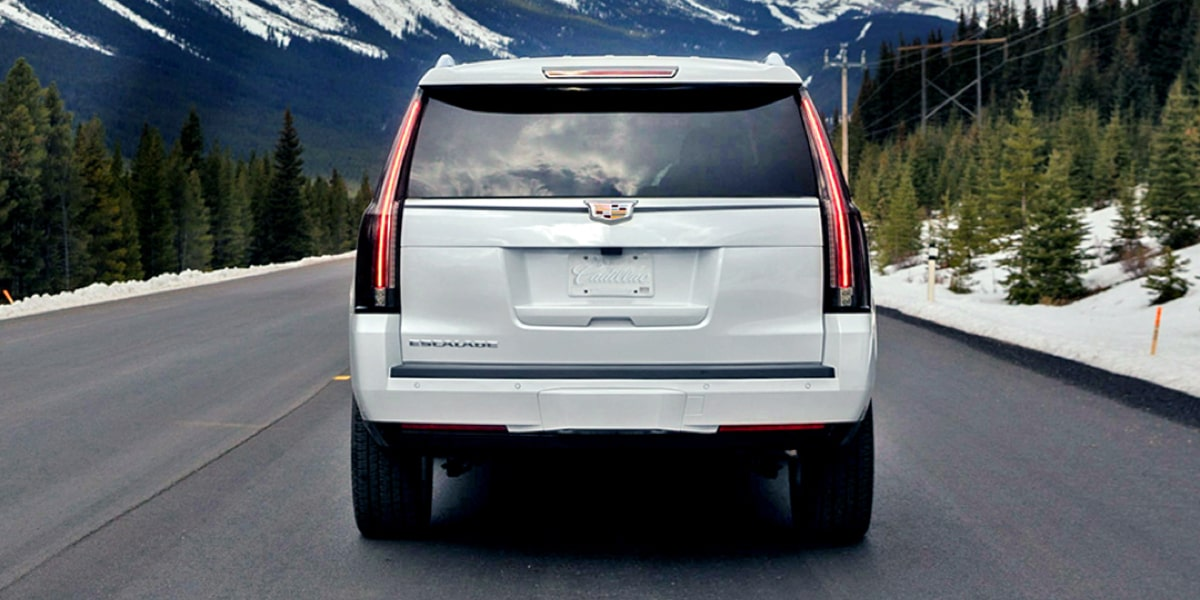 Rear Three Quarter View of Escalade